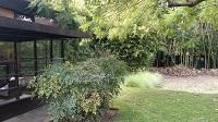 Schindler Garden Blog